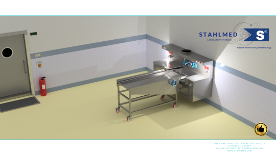 Embalming Stahlmed Autopsy 1 2